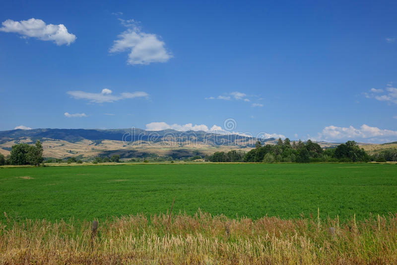 Ферма и горы приближают к совету, Айдахо стоковые изображения rf