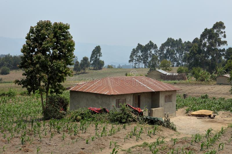 Ферма и земледелие в Танзании стоковая фотография