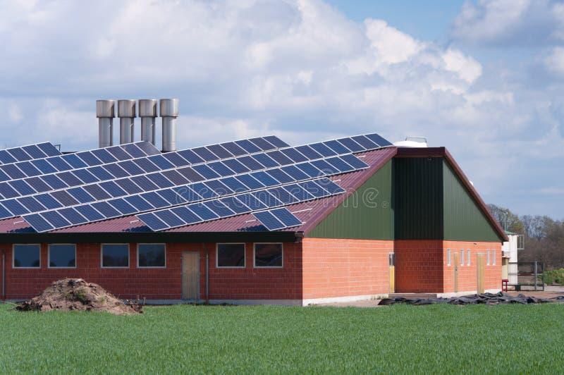 ферма обшивает панелями солнечное стоковая фотография