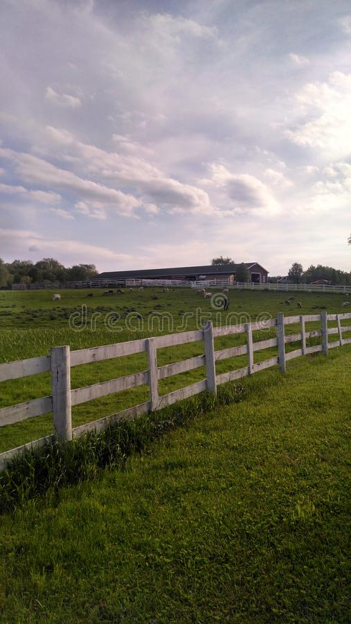 Ферма Огайо стоковое изображение