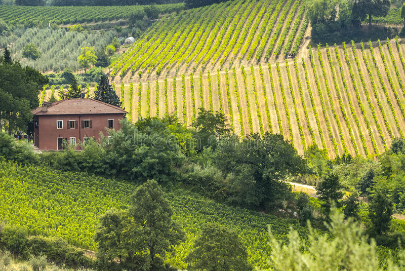 Ферма около San Gimignano (Тоскана) стоковое фото rf