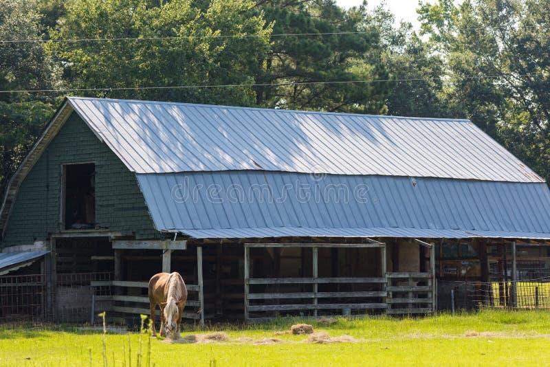ферма старая стоковое изображение rf