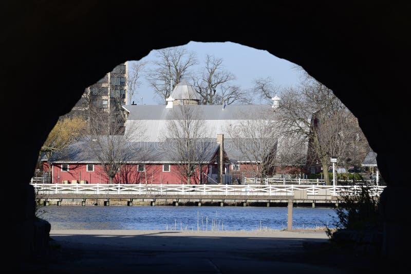 Ферма через пруд стоковые изображения rf