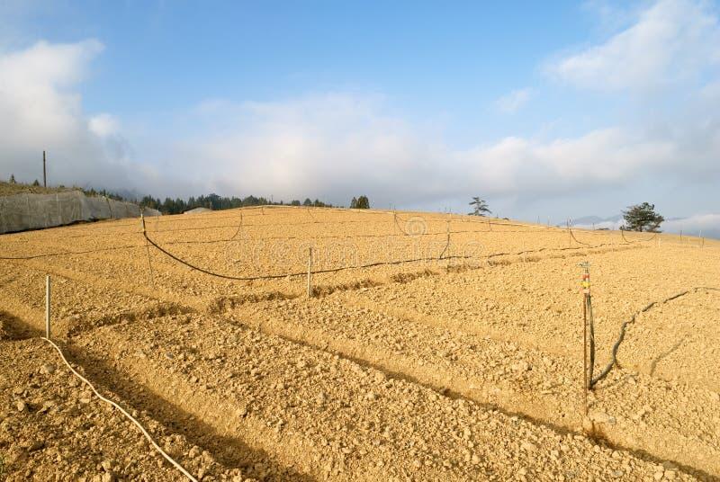 ферма стоковая фотография