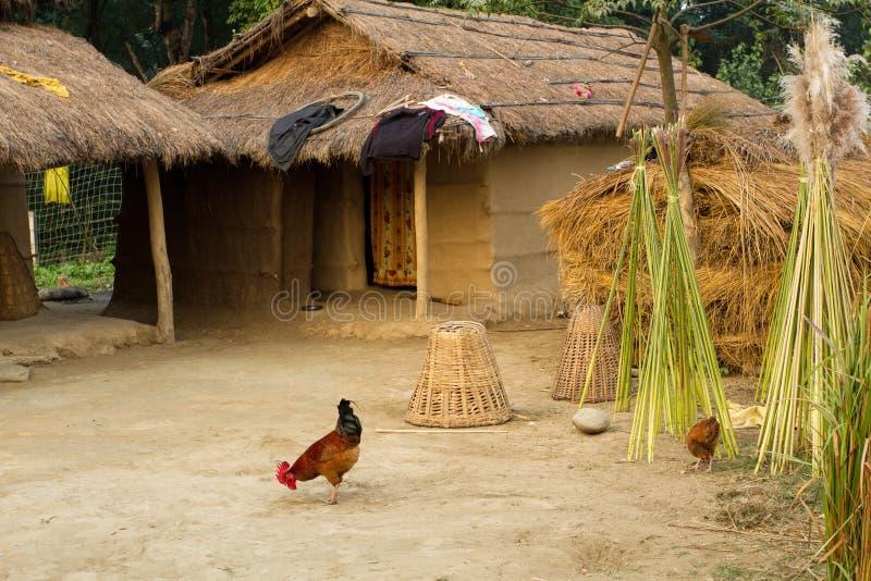 ферма nepalese стоковое изображение