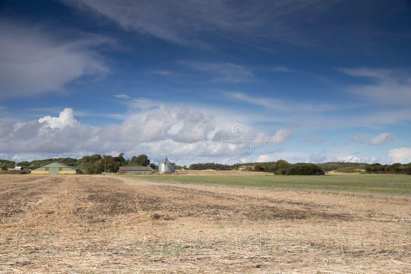 Ферма Tryggelev стоковые фото