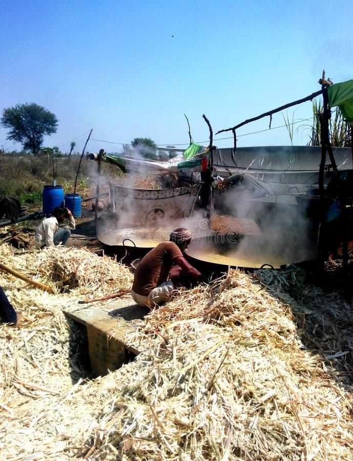 Фермеры делая желтый сахарный песок (jaggery) в сельской Индии стоковое фото