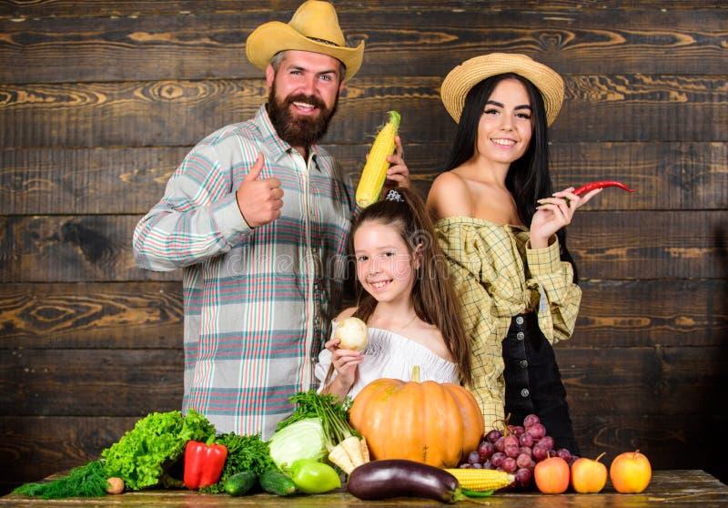 Фермеры загородного стиля семьи на рынке с плодами и растительностью овощей Концепция фермы семьи Фермеры семьи с стоковое изображение