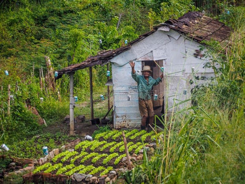 Фермеры приветствуя стоковое изображение rf