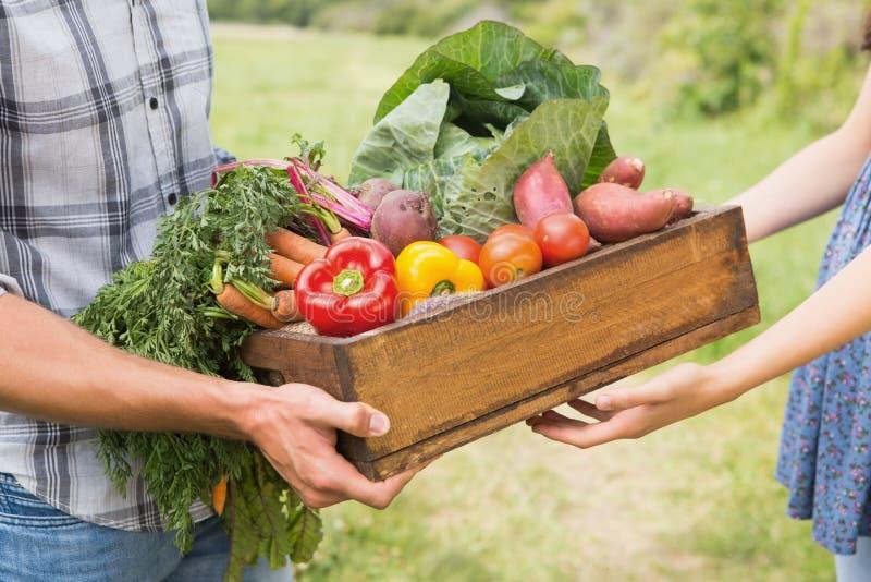 Фермер давая коробку veg к клиенту стоковое фото rf