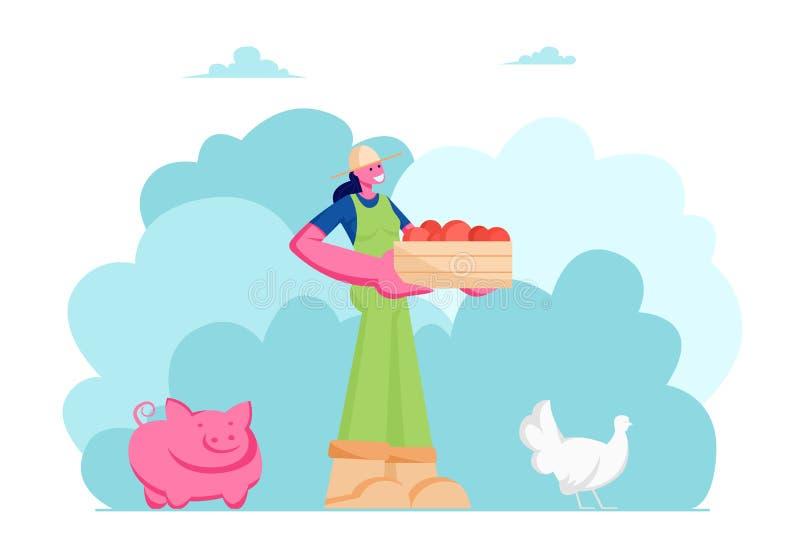 Фермер или садовник девушки в работе общей с коробкой зрелых здоровых плодов или овощей, животноводства, свиньи, цыпленка, фермы бесплатная иллюстрация