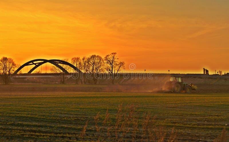 Фермер и поле культивировать на заходе солнца стоковое фото
