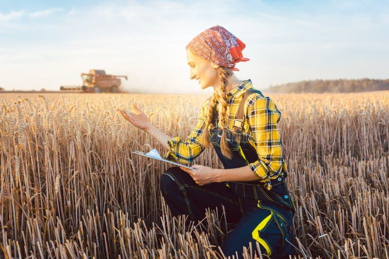 Фермер на поле во время сбора с доской сзажимом для бумаги стоковое изображение rf