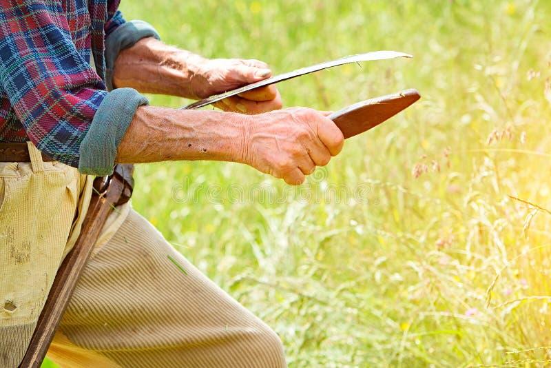 Фермер при борода точить его косу для использования для того чтобы накосить gra стоковые изображения