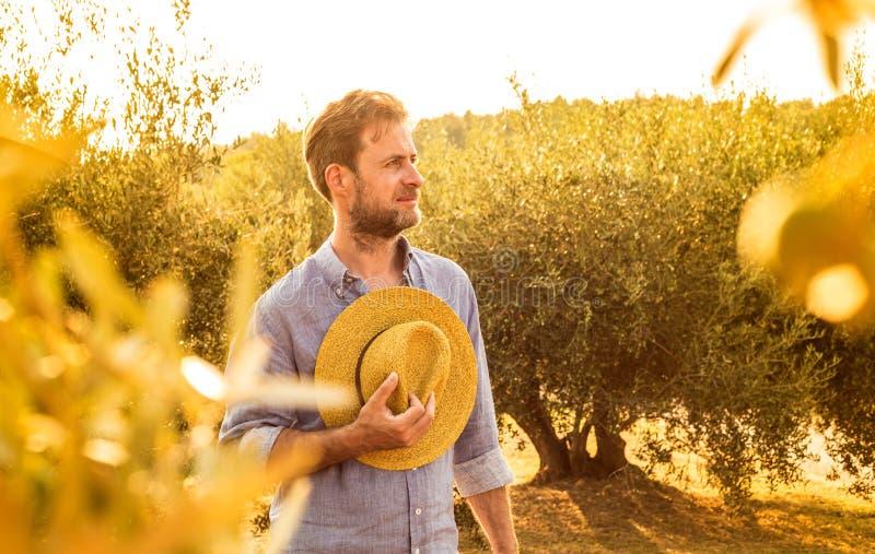 Фермер стоя перед оливковой рощей - земледелие стоковая фотография rf