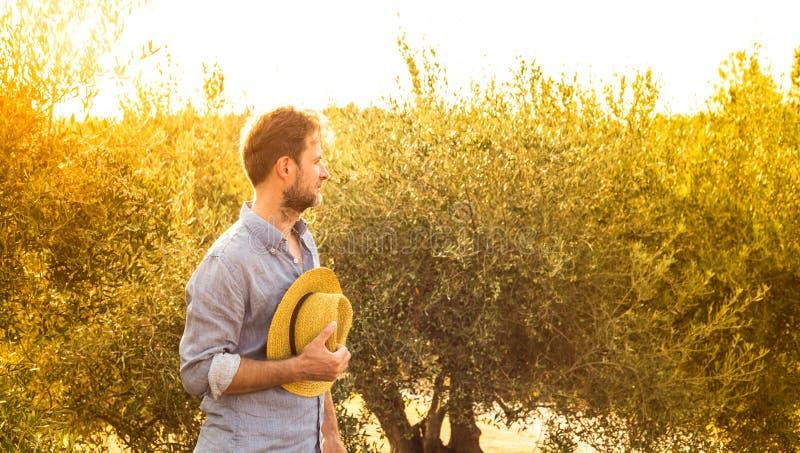 Фермер стоя перед оливковой рощей - земледелие стоковые изображения rf