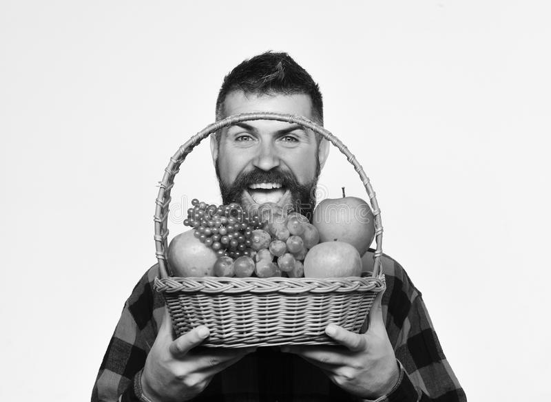Фермер с жизнерадостной стороной представляет яблока, виноградины и клюквы стоковые изображения