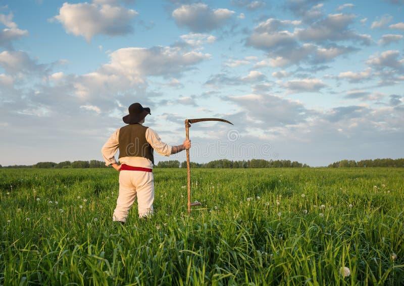 Фермер с косой на зеленом поле стоковые изображения rf