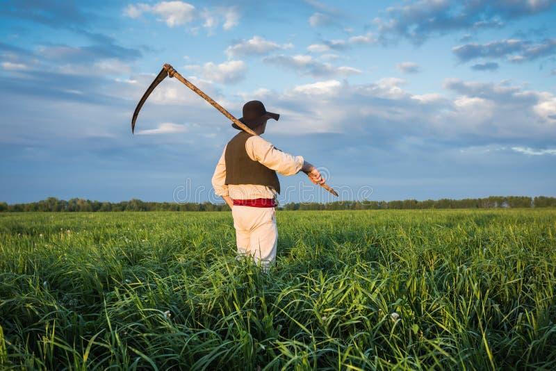 Фермер с косой на зеленом поле стоковое изображение