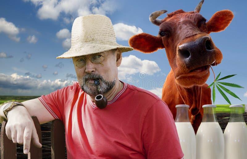 Фермер с куря трубой в pince-nez стоковые фото