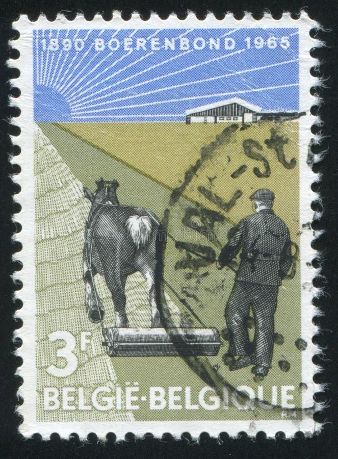 Фермер с лошад-нарисованным роликом стоковая фотография rf