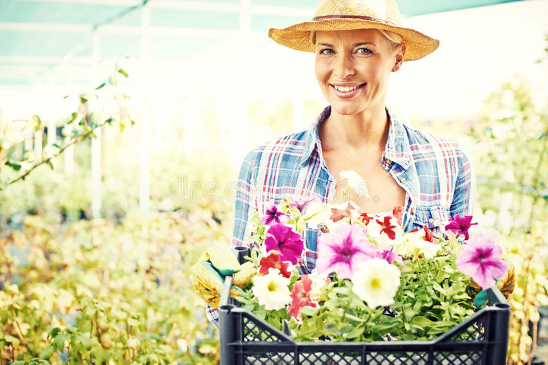 Фермер с цветками стоковые изображения