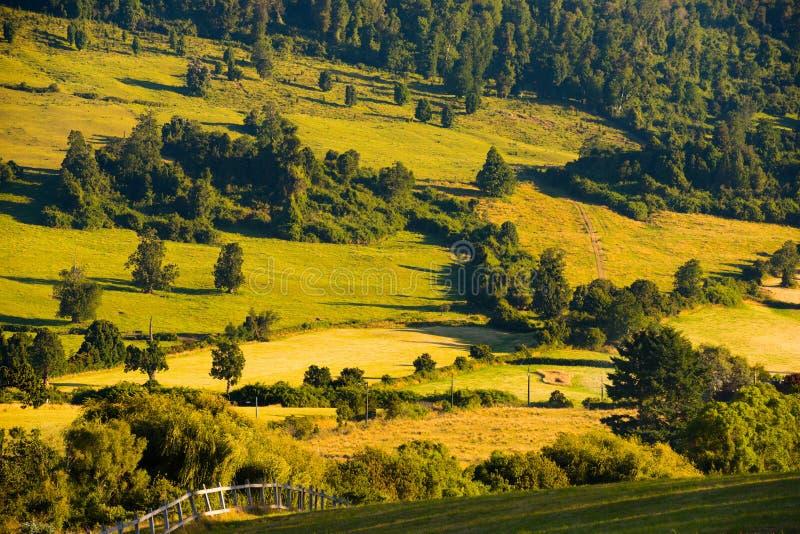 Фермы на берегах озера Llanquihue, Чили стоковое фото
