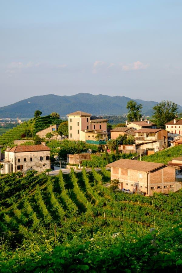 Фермы amd деревни Santo Stefano, Valdobbiadene стоковые изображения rf