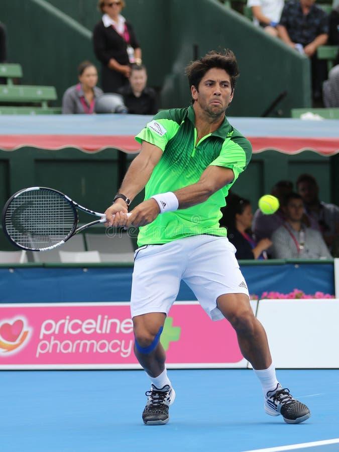 Фернандо Verdasco ударяет тазобедренный удар слева высоты стоковое фото