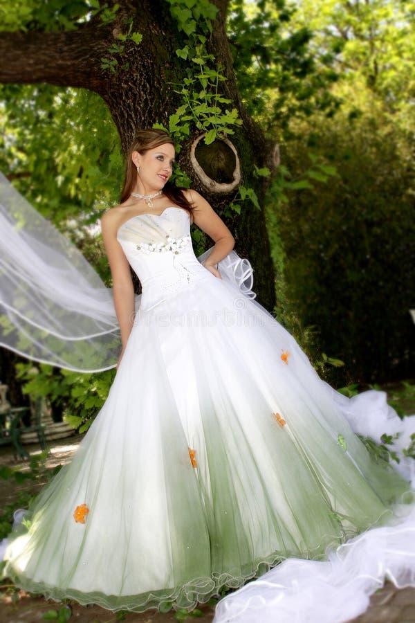 фе невесты стоковые фото
