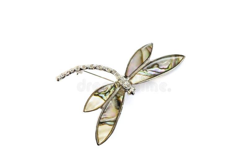 Фибула Dragonfly стоковая фотография
