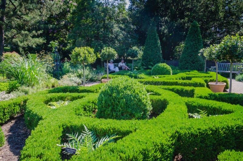 Фигурная стрижка кустов - сад Нью-Йорка ботанический - Нью-Йорк стоковые изображения rf