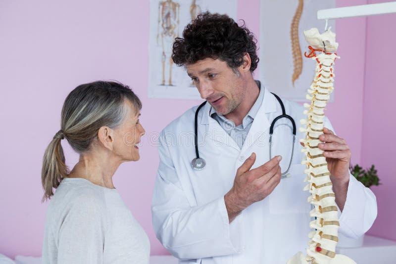 Физиотерапевт объясняя модель позвоночника к пациенту стоковое фото