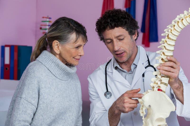 Физиотерапевт объясняя модель позвоночника к пациенту стоковые изображения rf