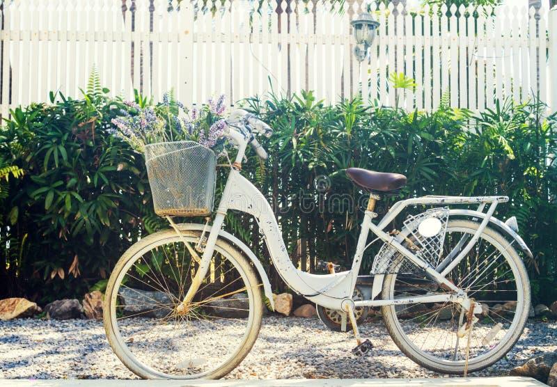 Фильтрованный год сбора винограда: Bicycle автостоянка в доме внешнем, классическом велосипеде в саде стоковые фото