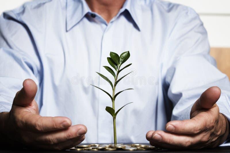 финансовохозяйственное богатство сейфа роста стоковое фото
