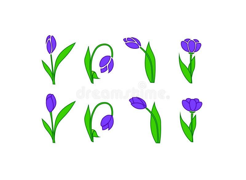 фиолетовые цветки на белой модели вектора предпосылки стоковая фотография