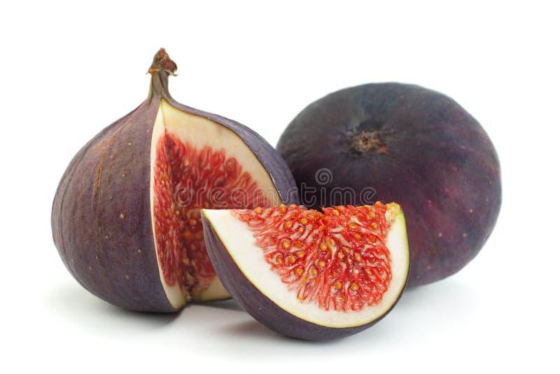 Фиолетовый фиг закрылок стоковое фото rf