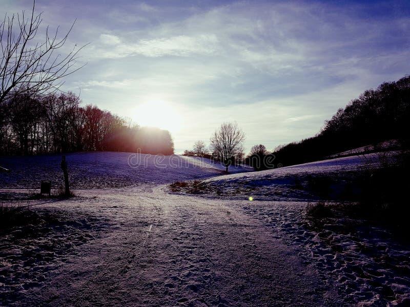 Фиолетовая зима стоковое изображение