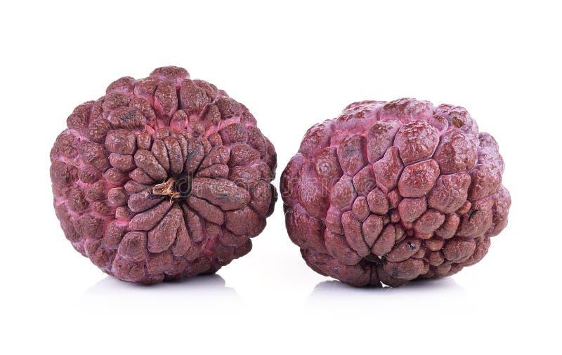 Фиолетовое яблоко заварного крема на белой предпосылке стоковое изображение