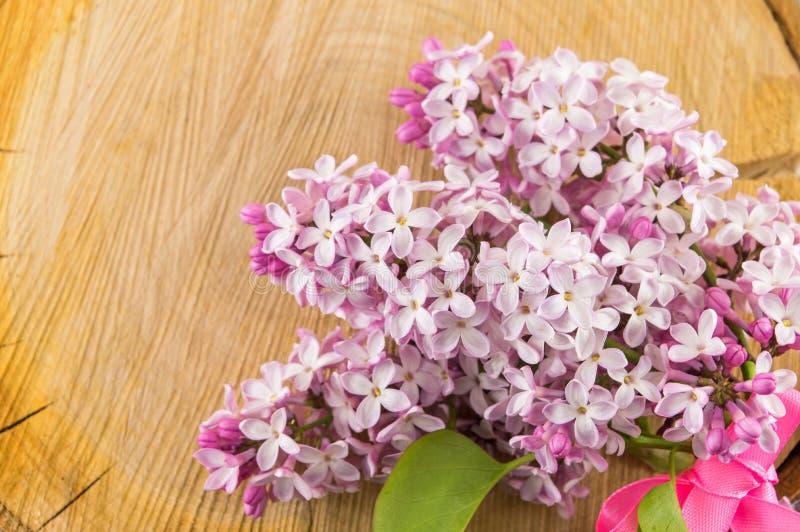 Фиолетовые цветки сирени на деревянном пне стоковые изображения