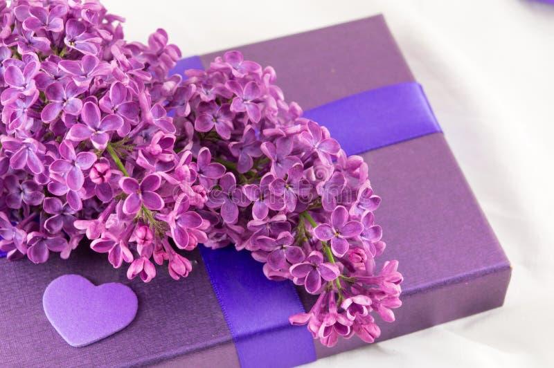 Фиолетовые цветки сирени на присутствующей коробке стоковые изображения