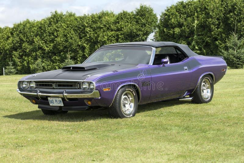 Фиолетовый автомобиль с откидным верхом претендента стоковые фотографии rf