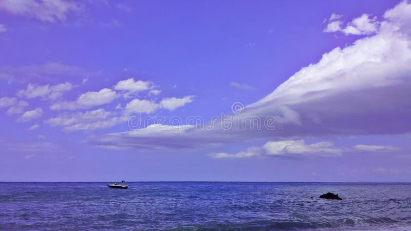 Фиолетовый воздух стоковое фото
