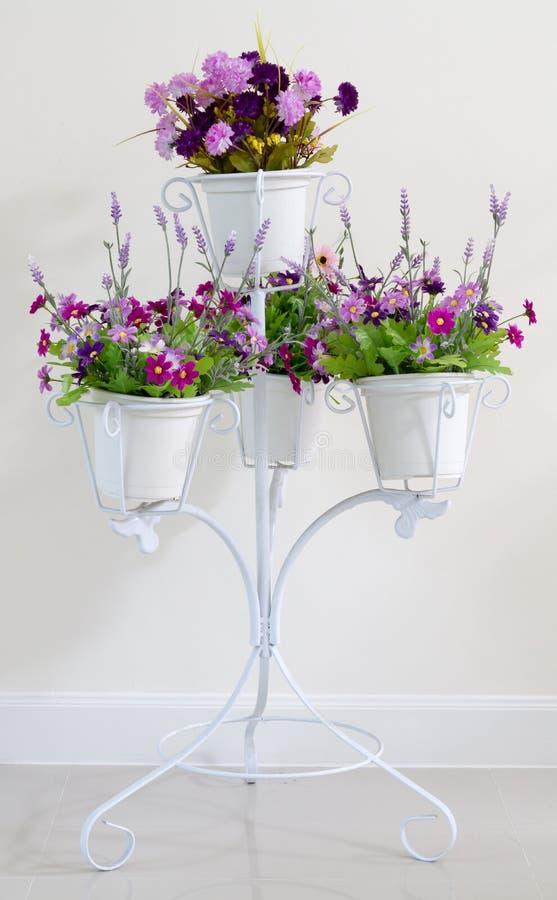 Фиолетовый цветок в цветочных горшках белизны 4 на стойке для украшения стоковое изображение rf