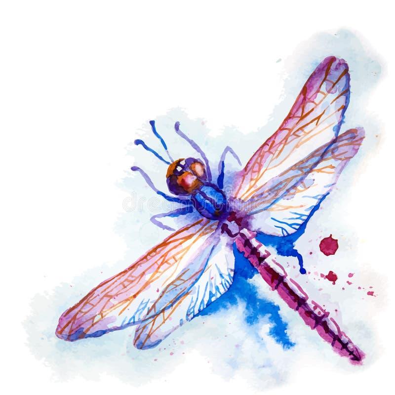 Фиолетовый Dragonfly акварели иллюстрация вектора