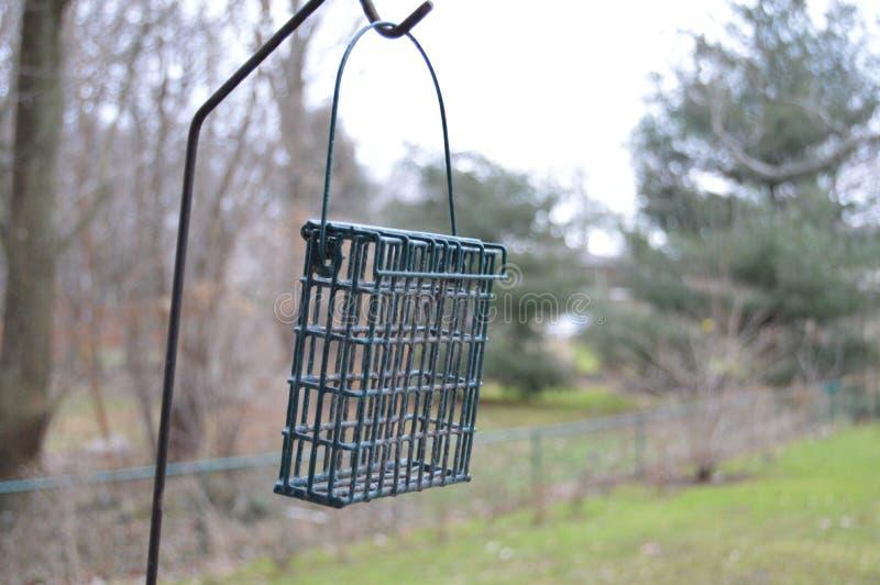 Фидер птицы осенью стоковая фотография