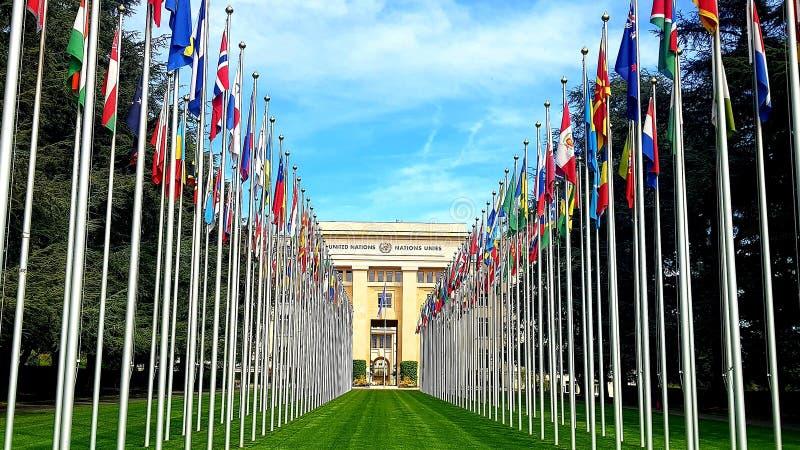 Флаги Организации Объединенных Наций в Женеве, Швейцарии стоковые изображения rf