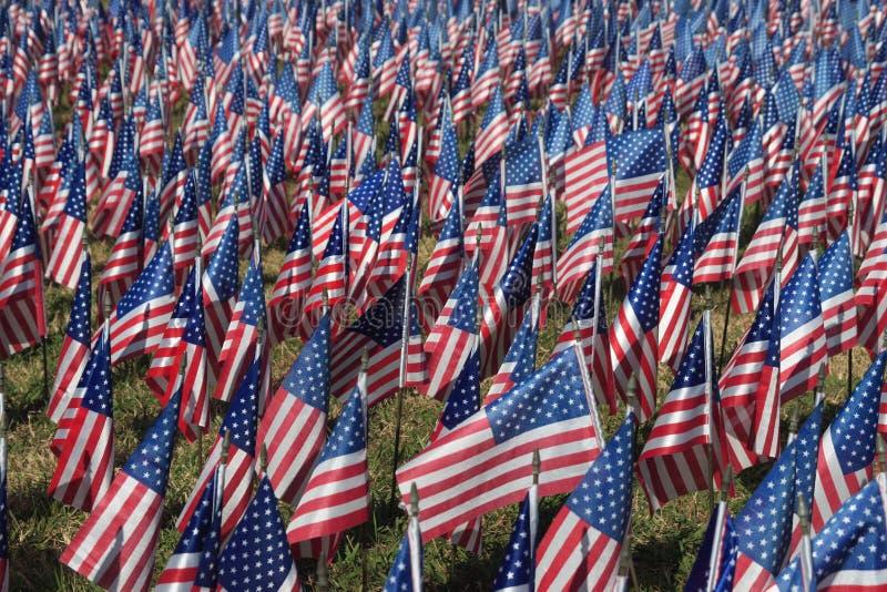 флаги поля стоковые фотографии rf