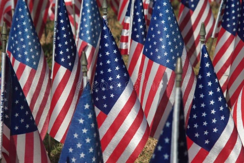 флаги поля стоковые изображения rf